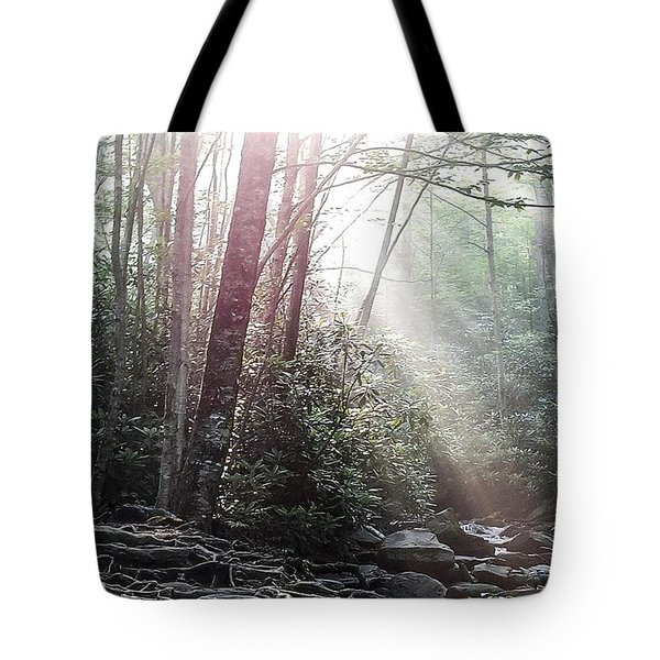 Sunbeam Streaming Into The Forest Tote Bag