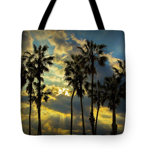 Tote Bag featuring the photograph Sunbeams And Palm Trees By Cabrillo Beach by Randall Nyhof
