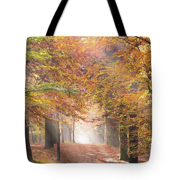 Sunbeams In A Forest In Autumn Tote Bag