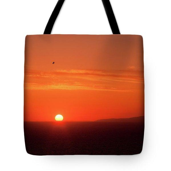 Sunbird Tote Bag