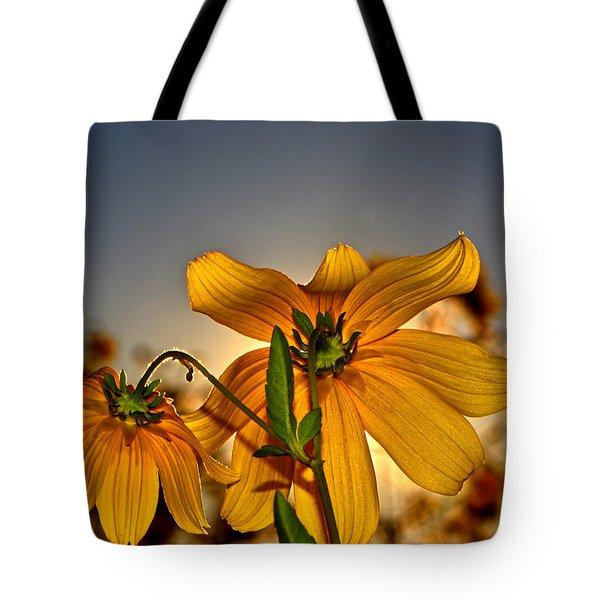 Sunblock 001 Tote Bag by George Bostian
