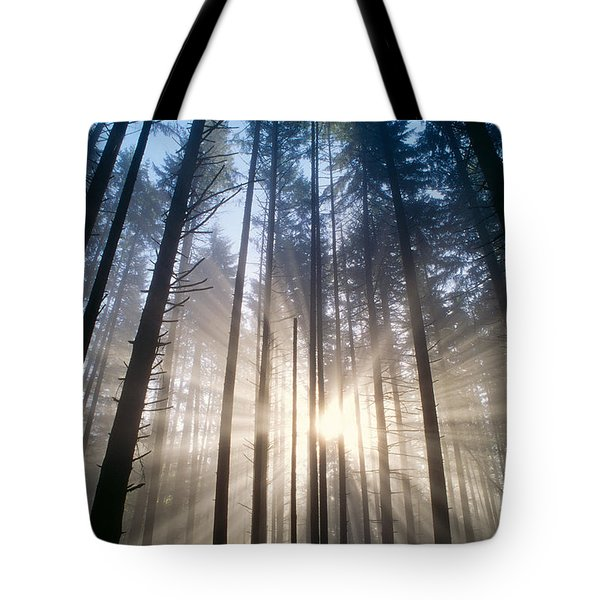 Sunburst In The Forest Tote Bag by Greg Vaughn - Printscapes