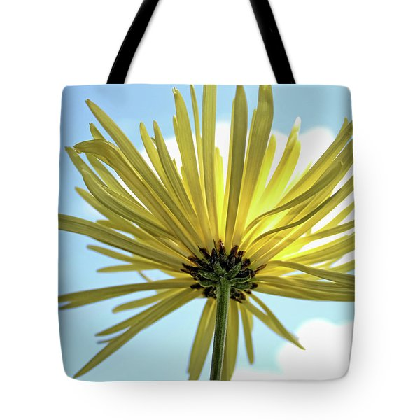 Tote Bag featuring the photograph Sunburst by Judy Vincent