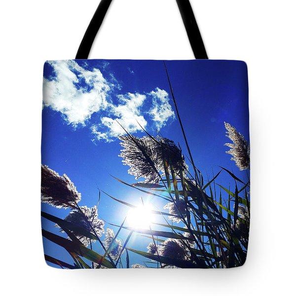 Sunburst Reeds Tote Bag
