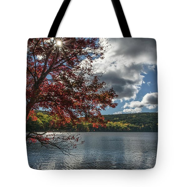 Sunburst Tree At Silvermine Lake Tote Bag