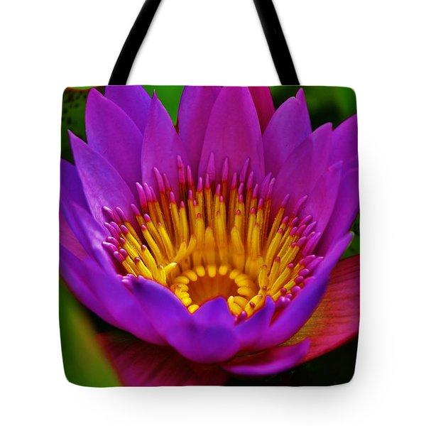 Tote Bag featuring the photograph Sunburst Water Lily by Craig Wood