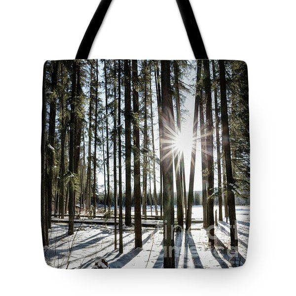 Sundial Forest Tote Bag