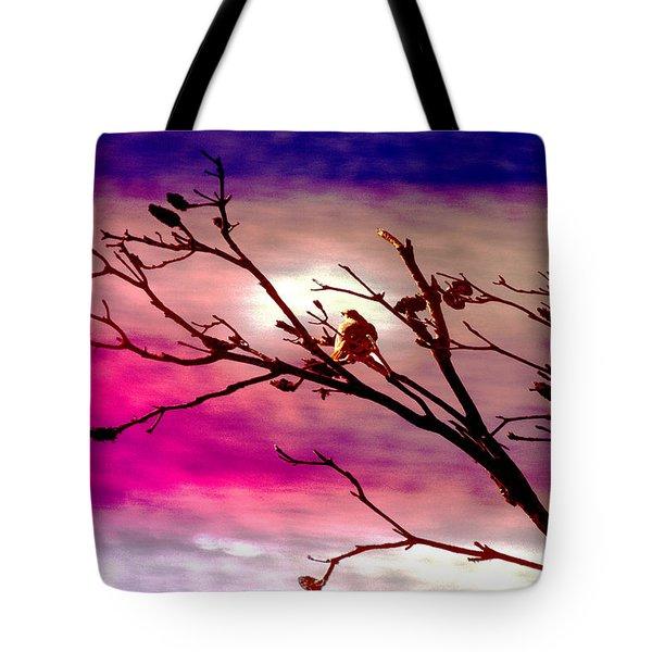 Sundown Tote Bag by Holly Kempe