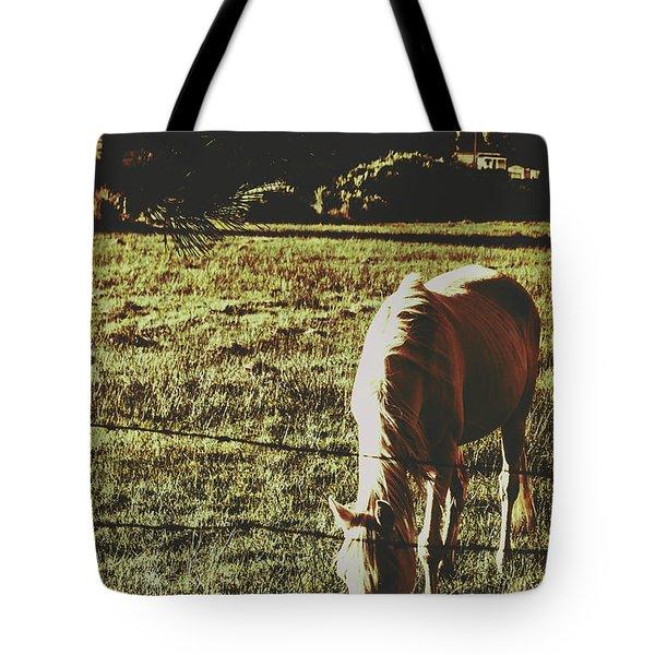 Sundown Horse Meadow Tote Bag