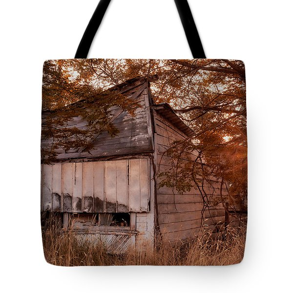 Sundown Tote Bag by Loni Collins