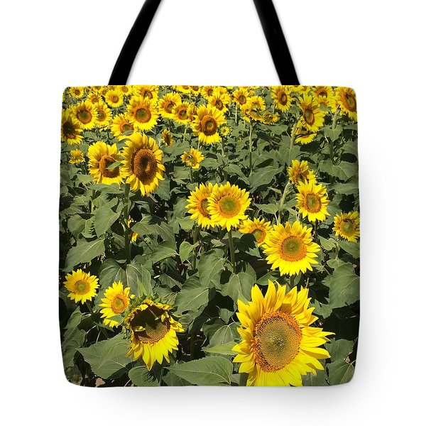 Sunflower 2016 Tote Bag