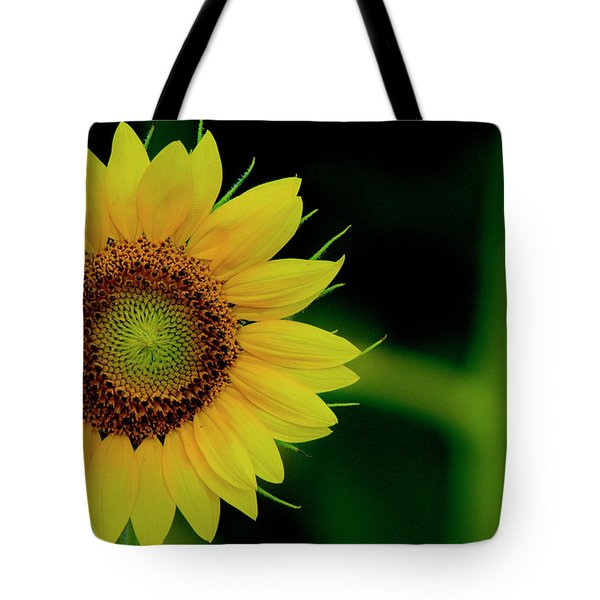 Tote Bag featuring the photograph Sunflower 2017 10 by Buddy Scott