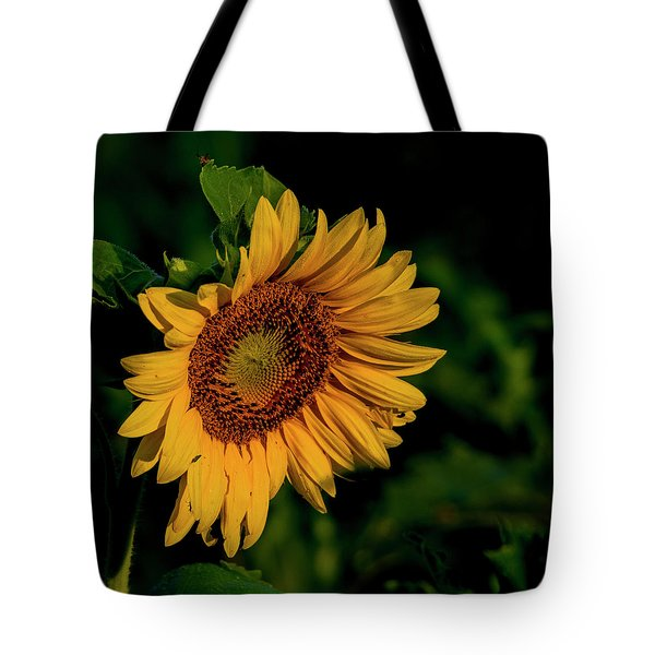 Tote Bag featuring the photograph Sunflower 2017 11 by Buddy Scott