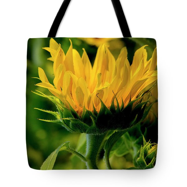 Tote Bag featuring the photograph Sunflower 2017 13 by Buddy Scott