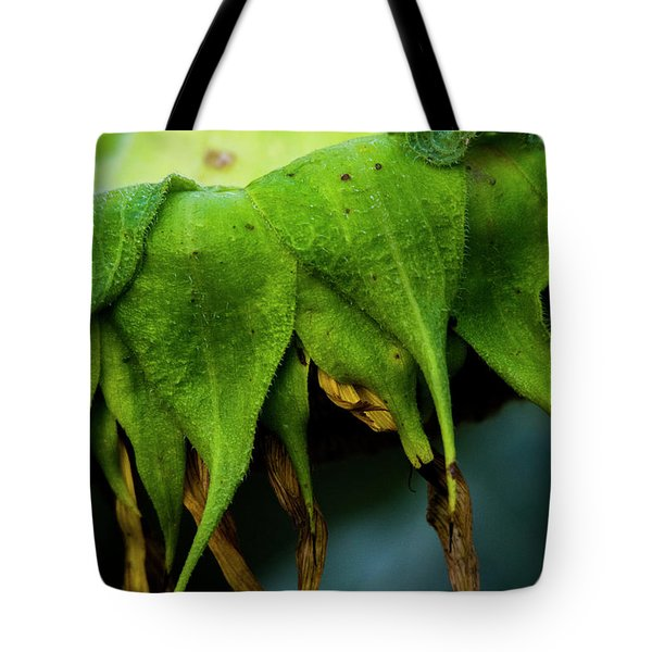 Tote Bag featuring the photograph Sunflower 2017 4 by Buddy Scott
