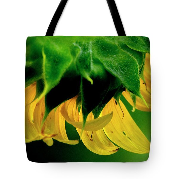 Tote Bag featuring the photograph Sunflower 2017 6 by Buddy Scott