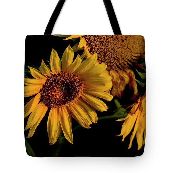 Tote Bag featuring the photograph Sunflower 2017 7 by Buddy Scott
