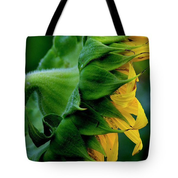 Tote Bag featuring the photograph Sunflower 2017 8 by Buddy Scott