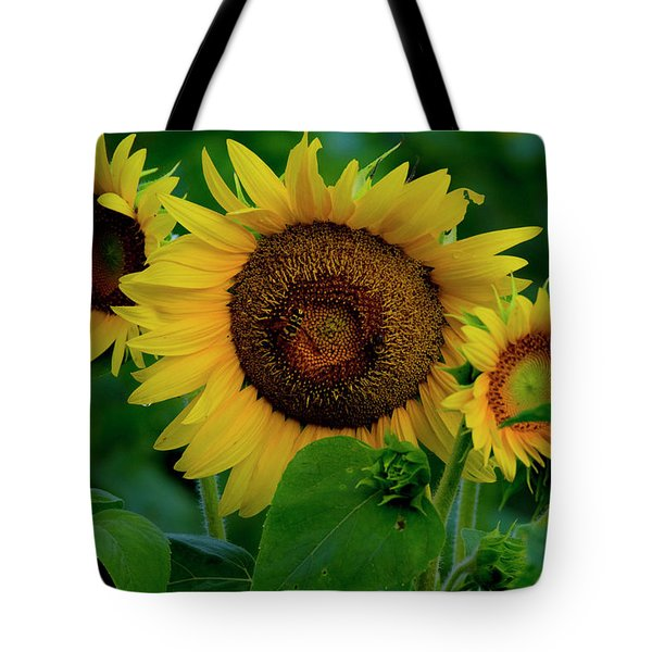 Tote Bag featuring the photograph Sunflower 2017 9 by Buddy Scott