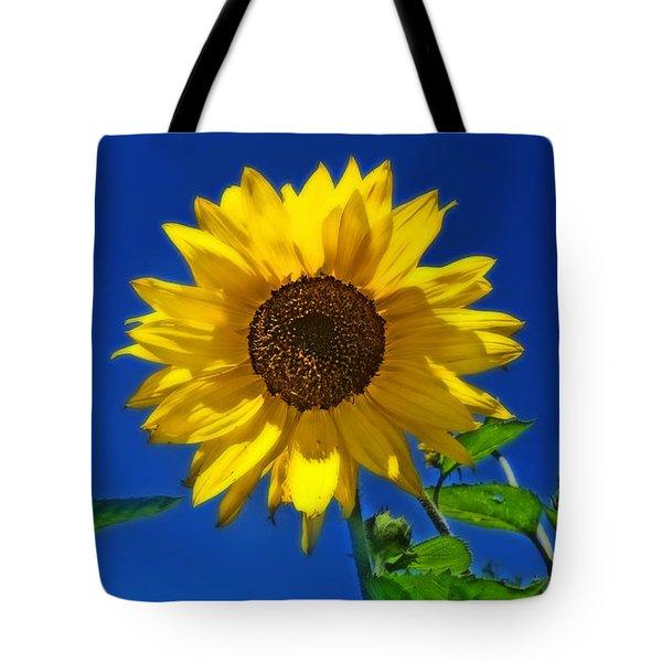 Maize 'n Blue Tote Bag