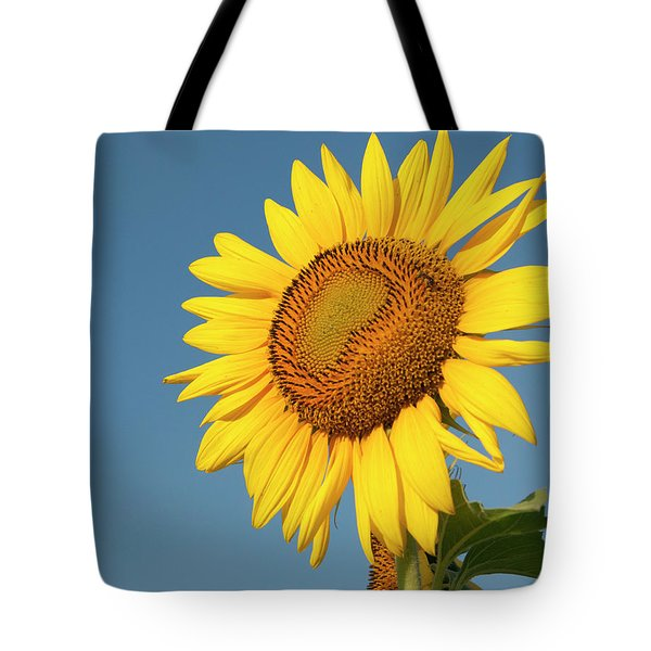 Sunflower And Blue Sky Tote Bag