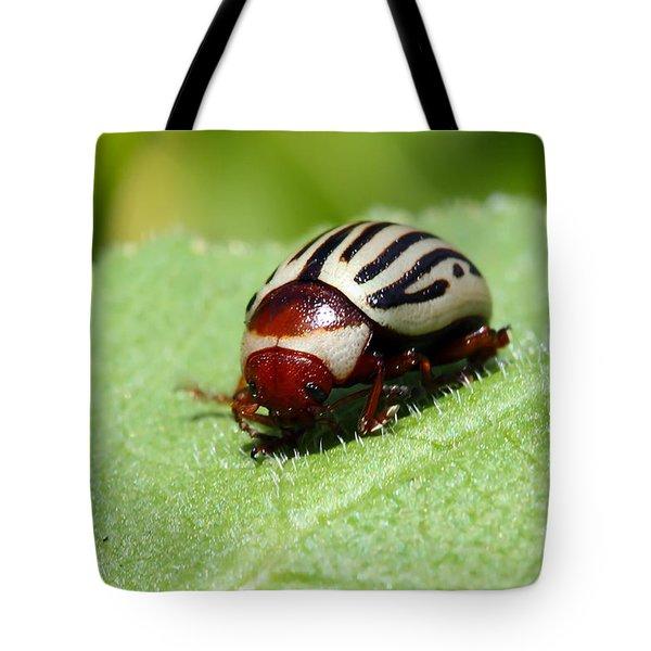 Sunflower Beetle Tote Bag by Teresa Zieba