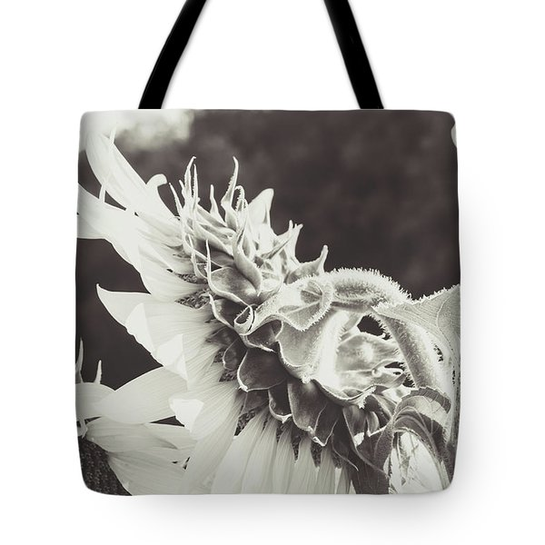 Tote Bag featuring the photograph Sunflower Black And White by Andrea Anderegg