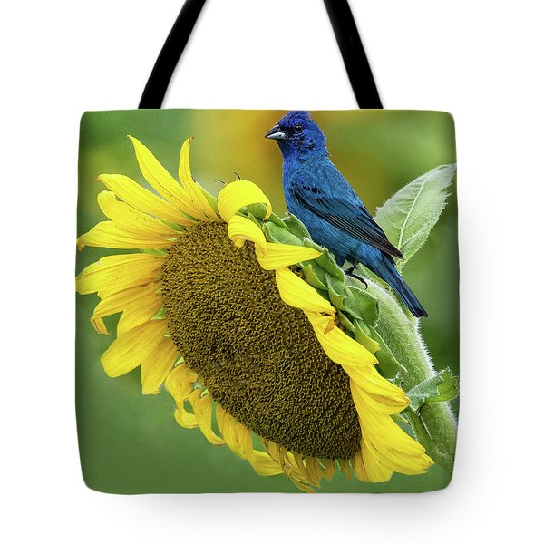 Sunflower Blue Tote Bag