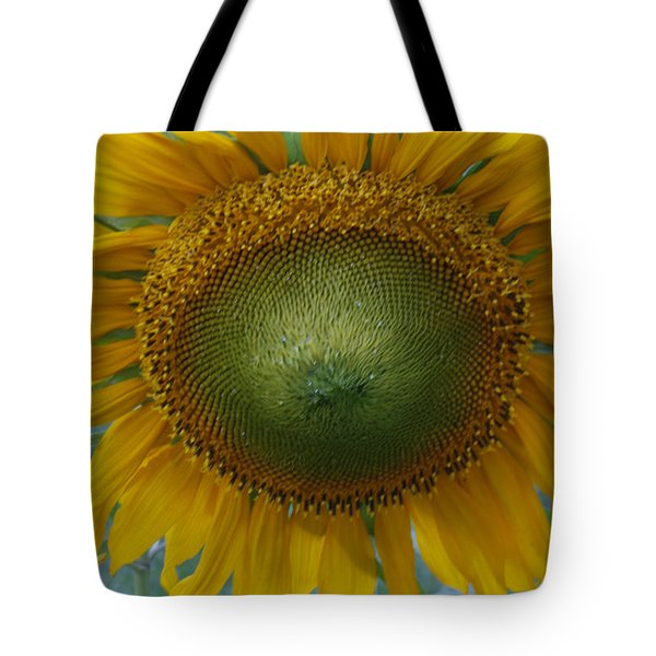 Sunflower Tote Bag by Catherine Alfidi