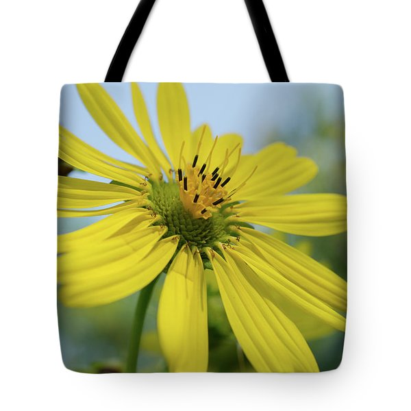 Sunflower Close-up Tote Bag