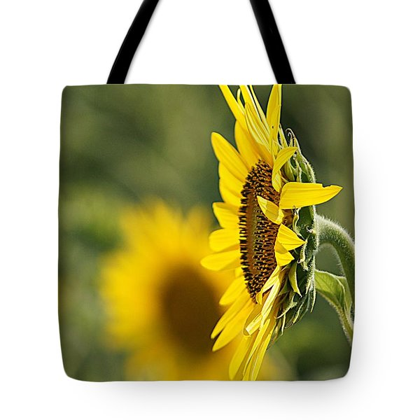 Sunflower Delight Tote Bag by Kathy Churchman