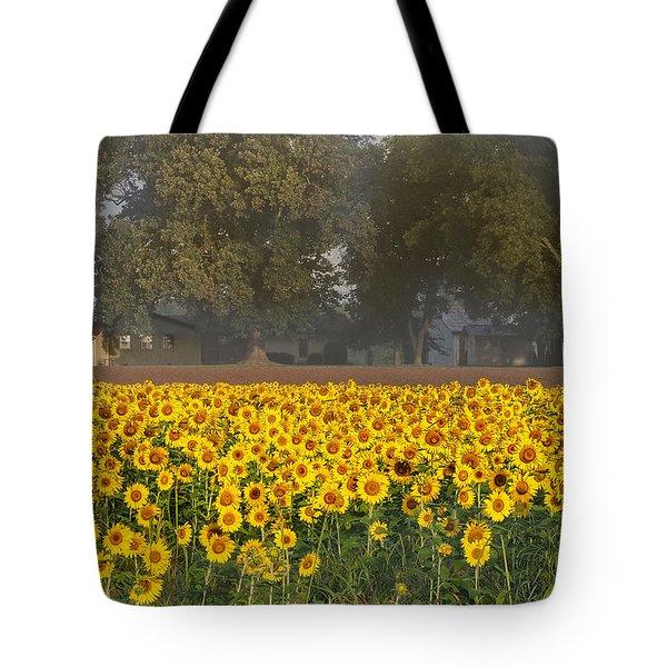 Sunflower Fields Tote Bag