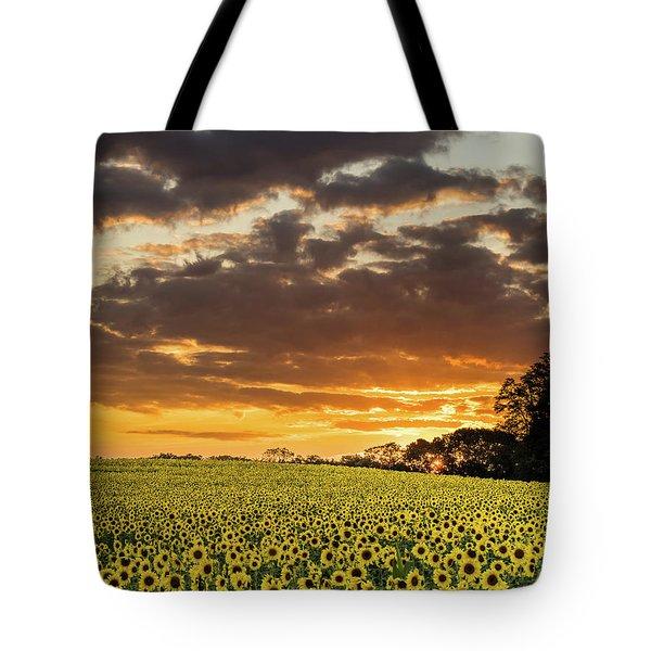 Sunflower Fields Sunset Tote Bag