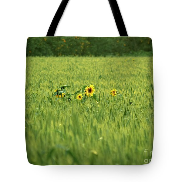 Sunflower In A Wheat Field Tote Bag