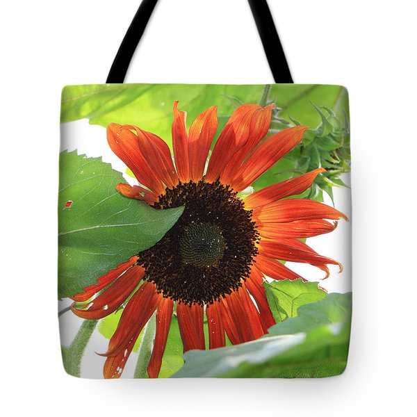 Sunflower In The Afternoon Tote Bag