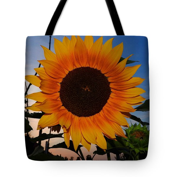 Sunflower In The Evening Tote Bag