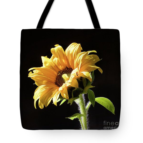 Sunflower Isloated On Black Tote Bag