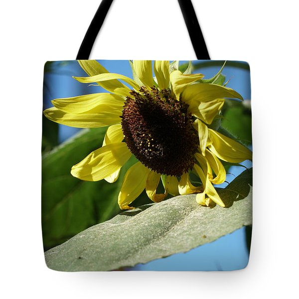 Sunflower, Lemon Queen, With Pollen Tote Bag