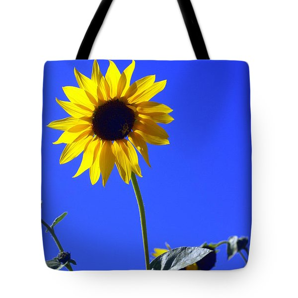 Sunflower Tote Bag by Marty Koch