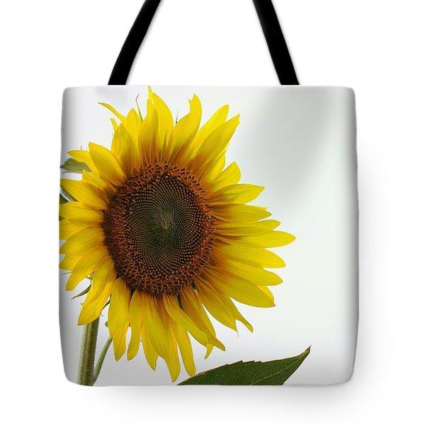 Sunflower Minimal Tote Bag by Joseph Skompski