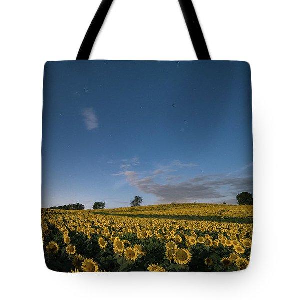 Sunflower Nights Tote Bag
