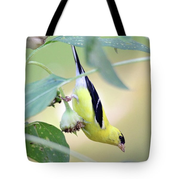 Tote Bag featuring the photograph Sunflower Seed Snack by Trina Ansel
