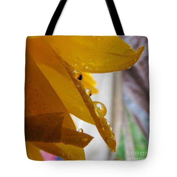 Sunflower Series II Tote Bag