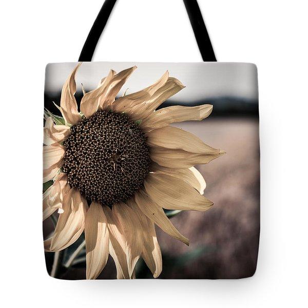 Sunflower Solitude Tote Bag