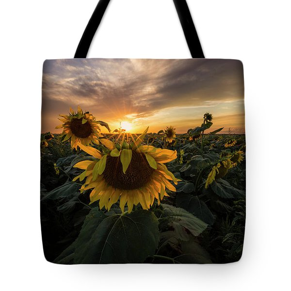 Tote Bag featuring the photograph Sunflower Sunstar  by Aaron J Groen