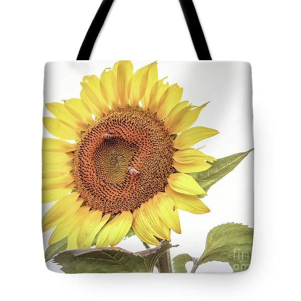 Tote Bag featuring the photograph Sunflowers 10 by Andrea Anderegg