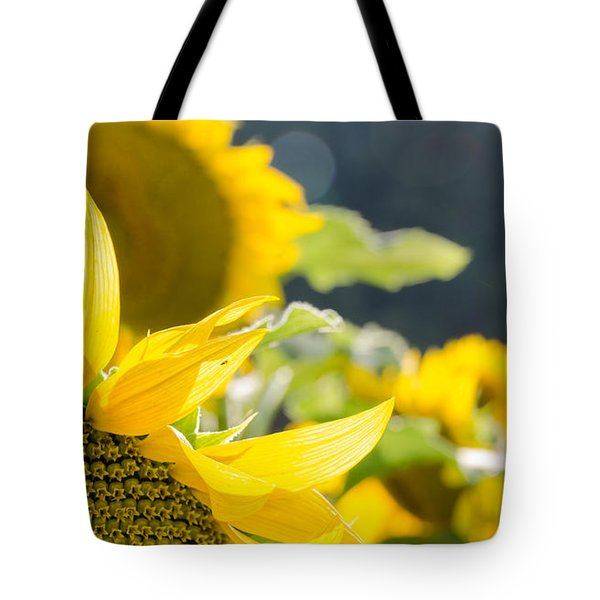 Tote Bag featuring the photograph Sunflowers 14 by Andrea Anderegg