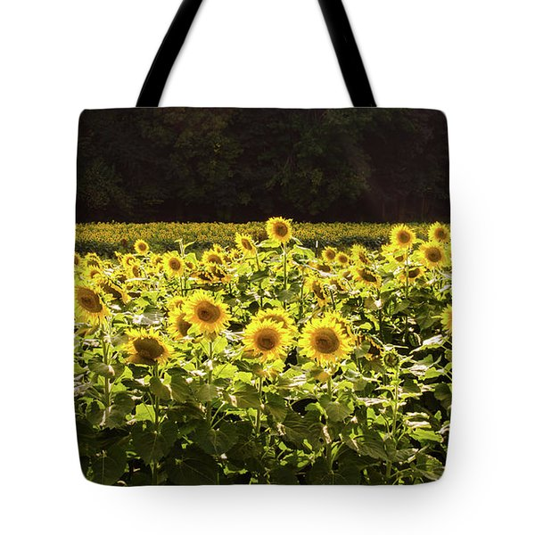 Tote Bag featuring the photograph  Sunflowers 5 by Andrea Anderegg