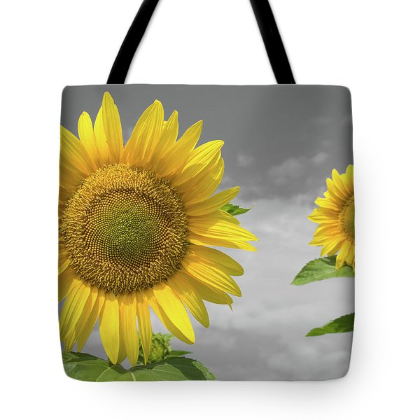 Sunflowers V Tote Bag