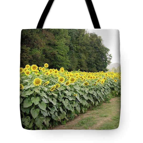 Tote Bag featuring the photograph  Sunflowers 6 by Andrea Anderegg